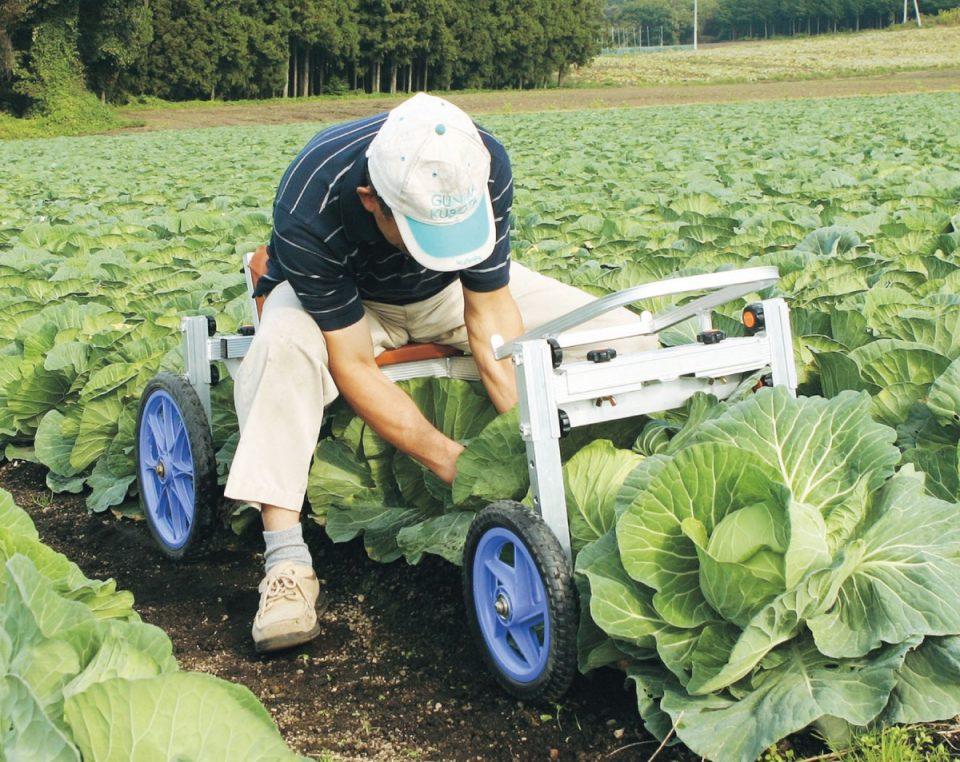 乗用植付け・収穫用作業車 (キャベツ等に)