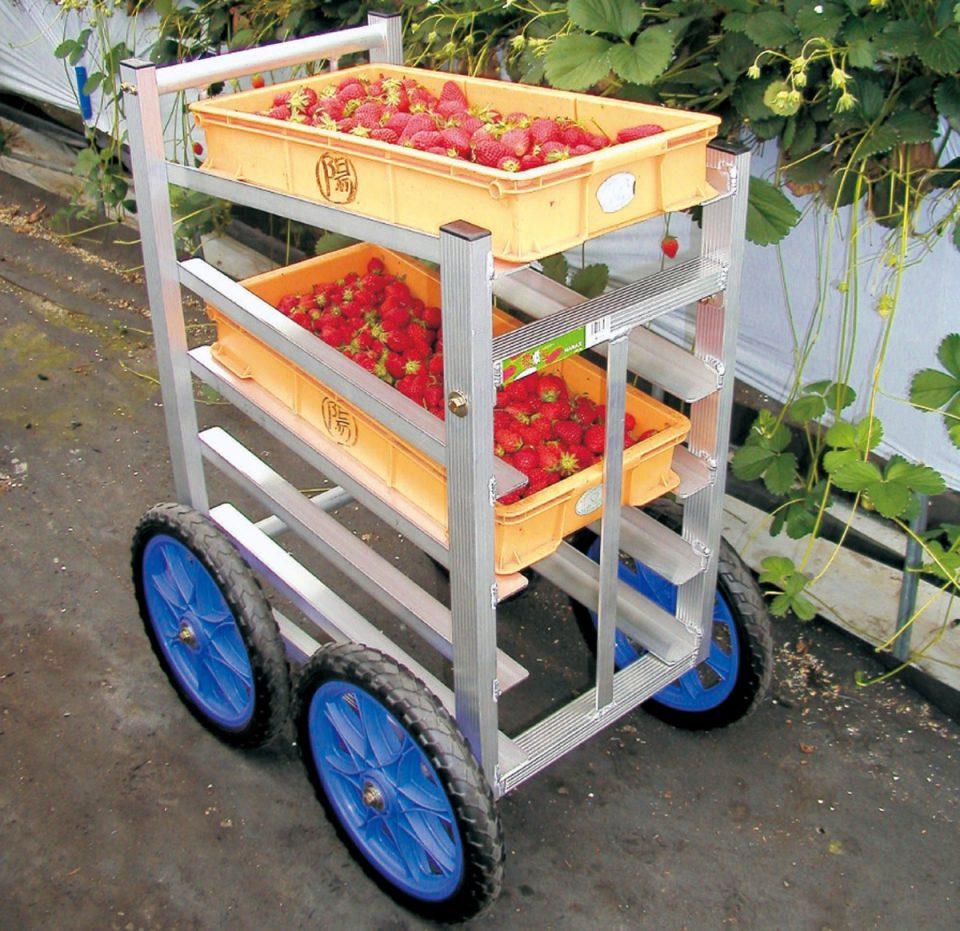 いちご収穫用ワゴン5段タイプ