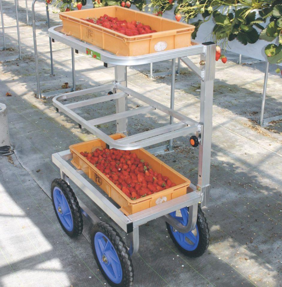 いちご収穫用ワゴン3段タイプ