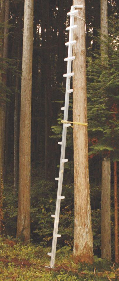 アルミ製 枝打はしご